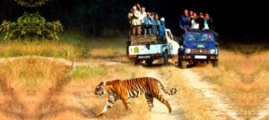 Kerala 12 Nights/13 Days Tour 01