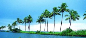Kerala 05 Nights/06 Days Tour 09